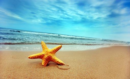 العلاج بمياه البحر