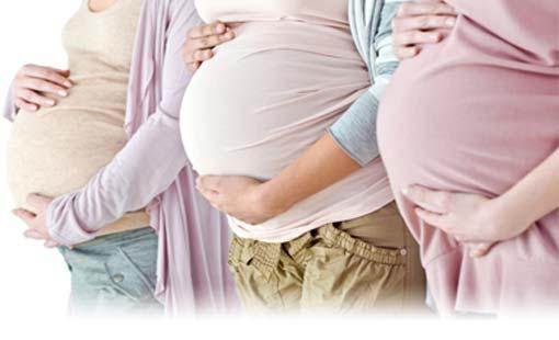 كثرة الإنجاب مضاد طبيعي للشيخوخة