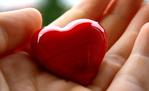 الشتائم مردودة والمحبة هدية الزمن