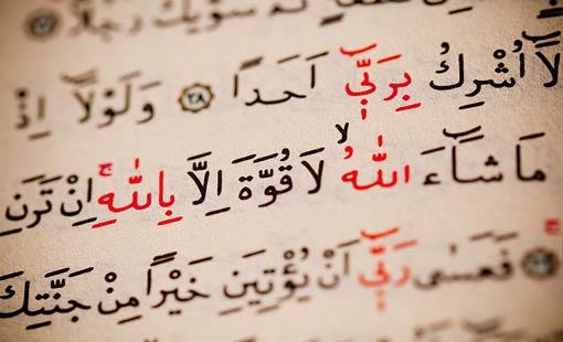 ظلال التقوى في القرآن