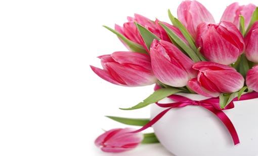 قوة الزهور وتأثيرها في شخصيتنا
