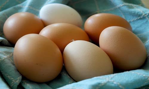 الإكثار من البيض لا يرفع نسبة الكوليسترول