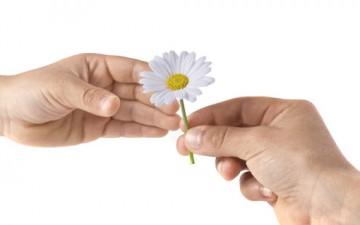 طريقتنا لتغذية العلاقة تحدد مستقبلها وشكلها
