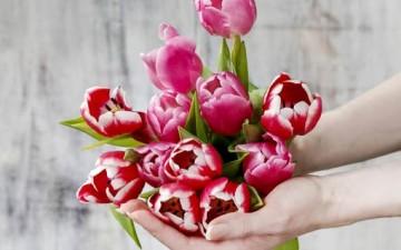 الحياة الزوجية كالنبتة العزيزة