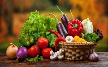 التنوع بالغذاء ضرورة من ضرورات نجاحه