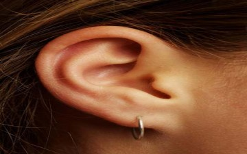 الجلد يدعم وظيفة الأذن