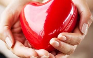كيف يعمل القلب؟