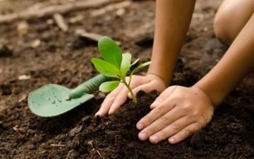 تعزيز علاقة الطفل بالطبيعة