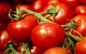 الطماطم تقي من السكتة الدماغية