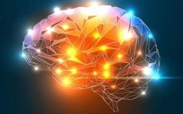 العقل البشري وقدراته الكامنة