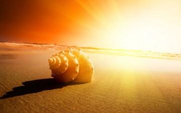 أشعة الشمس.. المصدر الطبيعي لفيتامين «D»