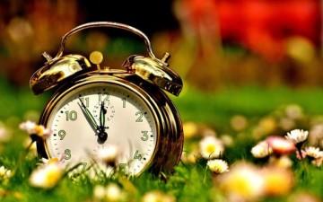 تنظيم الوقت بنجاح