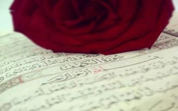المنطق القرآني.. وجداني عقلي