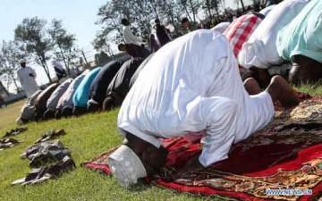 المقصد التربوي للصلاة في الجانب العقلي