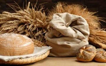 القيمة الغذائية للقمح المبرعم