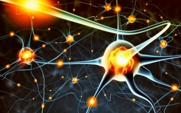 لصحتك.. استفد من طاقات دماغك