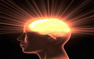 الدماغ وسيكولوجية الإدراك والتفكير