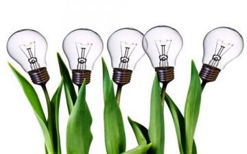 الإدارة بحثاً عن الإبداع