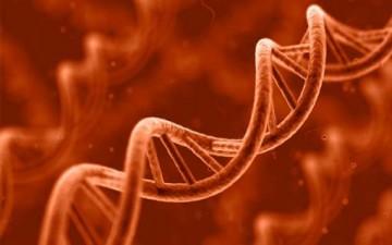علم الوراثة وعلم الأخلاق البيولوجي