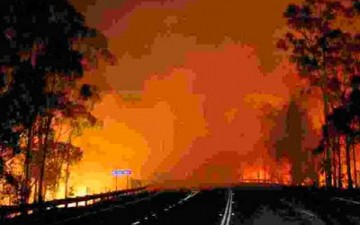 الحرارة تبلغ مستويات قياسية في أستراليا