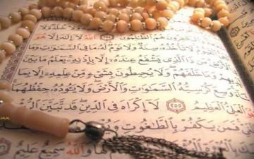 القلوب العاقلة في القرآن الكريم