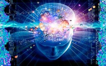 توزيع الذكاء في المجتمع