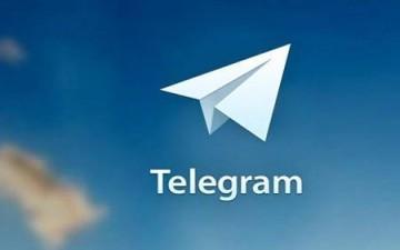 عدد مستخدمي تطبيق تيلجرام يصل لحوالي 35 مليون مستخدم